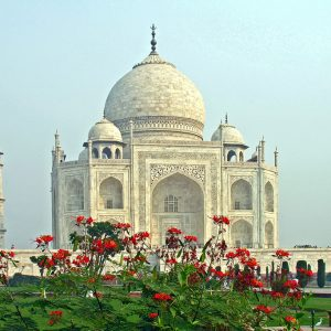 Visit popular tourist attractions like the Taj Mahal while receiving medical treatment. Read more at cure-hepc.com